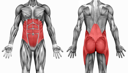 muscle toning